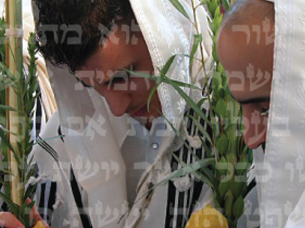 Sukkot – What's it all about?