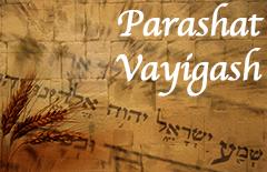 11-vayigash