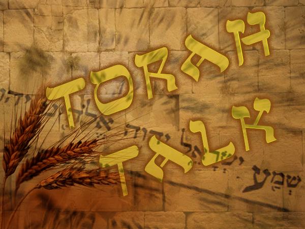 Torah Talk Series