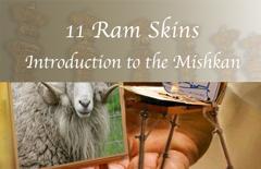 Ram-Skins-A