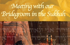 12-Meeting-with-our-bridegroom-A